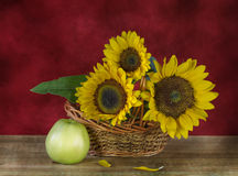 sunflowers and apples Stock Photos