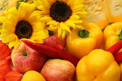 Sunflowers, apples and peppers Stock Image