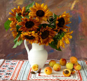 Sunflowers and apricots Stock Photos