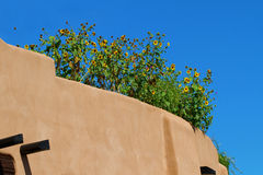 Sunflowers atop adobe building Royalty Free Stock Photography