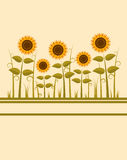 Sunflowers background. Illustrated background with abstract sunflowers Stock Photography