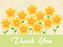Sunflowers background for thankyou Stock Photography