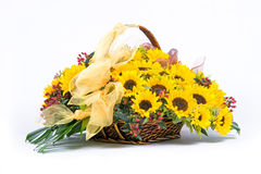 Sunflowers in basket. Sunflower decoration in wicker basket on white background Royalty Free Stock Photos