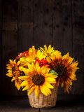 Sunflowers in basket Royalty Free Stock Photos