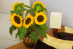 Sunflowers by the bed. Blooming sunflowers by the bed in a cozy room Stock Photography