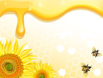 Sunflowers and bees on honey background Royalty Free Stock Images