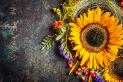 Sunflowers with berries and flowers. Floral autumn decoration on dark rustic vintage background Stock Photos
