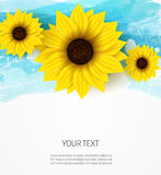 Sunflowers on blue abstract background Stock Images