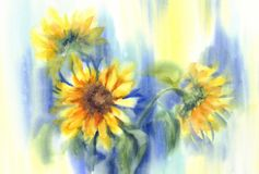 Sunflowers in blue background watercolor vector illustration