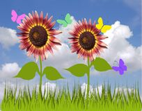 Sunflowers and blue sky. Background Royalty Free Stock Image
