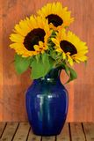 Sunflowers in blue vase. Vibrant golden sunflowers in dark blue vase on rustic background in vertical format. Fall concept royalty free stock image