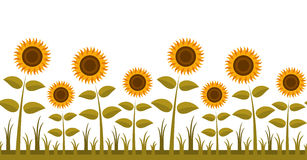 Sunflowers border stock illustration