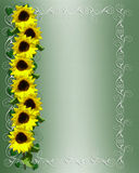 Sunflowers Border  Stock Photography