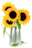 Sunflowers Bouquet. Royalty Free Stock Photography