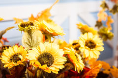 Sunflowers bouquet at the blue house wall background. Horizontal Royalty Free Stock Images