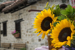 Sunflowers bouquets  on the background of old house Royalty Free Stock Images