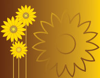 Sunflowers on brown-yellow Royalty Free Stock Image