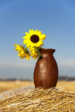 Sunflowers on bundle of hay. Royalty Free Stock Photography