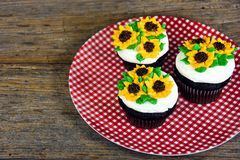 Sunflowers on chocolate cupcakes. With red and white gingham plate Stock Photo