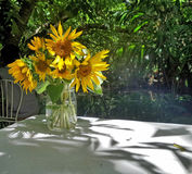 Sunflowers in clear glass vase under shade of tree in the garden Stock Photography