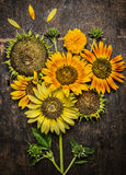 Sunflowers composing on rustic wooden background Stock Photos