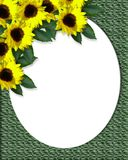 Sunflowers corner Design Canvas Royalty Free Stock Photos