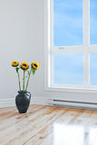 Sunflowers in empty room with big window Royalty Free Stock Image
