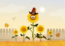 Sunflowers field cartoon. Cute illustration of sunflowers field cartoon Stock Images