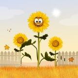Sunflowers field cartoon. Illustration of sunflowers field cartoon Royalty Free Stock Photo