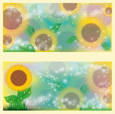 Sunflowers floral banners Stock Photos