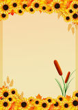 Sunflowers frame Stock Images