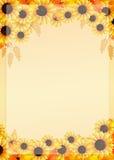 Sunflowers frame Stock Photos