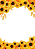 Sunflowers frame Stock Image
