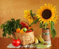Sunflowers and fresh vegetables Stock Photos