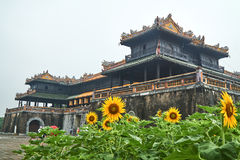 Sunflowers in front of the entrence door from the imperial city, Hue, Vietnam. On a foggy day. Stock Image