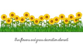 Sunflowers and Grass Decoration Element royalty free stock photography