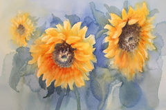 Sunflowers on green background watercolor. A watercolor drawing of three bright golden sunflowers with green leaves, on blue background, vintage style botanical Stock Photo