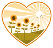 Sunflowers in heart Stock Photography