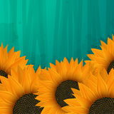 Sunflowers icon. Abstract  art Stock Photos