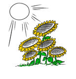 Sunflowers illustration Stock Images