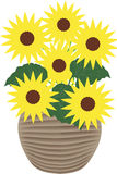 Sunflowers - illustration Stock Image
