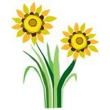 Sunflowers Illustration Royalty Free Stock Image