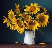 Sunflowers in a jug and plums royalty free stock images