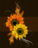 Sunflowers and Leaves. These beautifully colored sunflowers and leaves have been added to this dark textured background. This would be a lovely greeting card Stock Photography