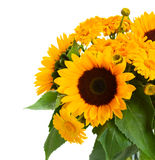 Sunflowers and marigold flowers bouquet Stock Image