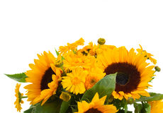 Sunflowers and marigold flowers close up Stock Photography