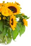 Sunflowers and marigold flowers close up Royalty Free Stock Image