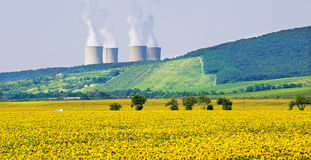 Sunflowers and nuclear power plant Royalty Free Stock Photo