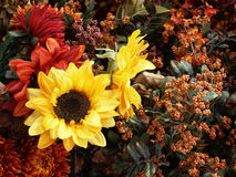 Sunflowers and other fall flowers. Great for background Stock Photography