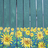 Sunflowers painting on fence wood Royalty Free Stock Images